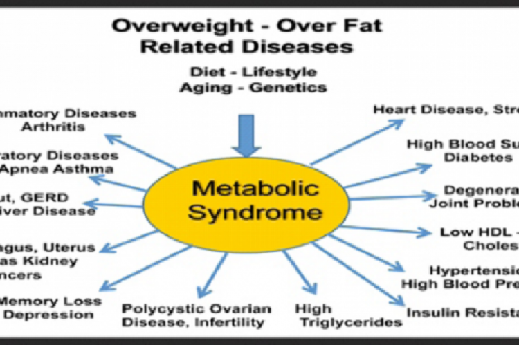 Fig. 2: Patients suffering from metabolic disorders