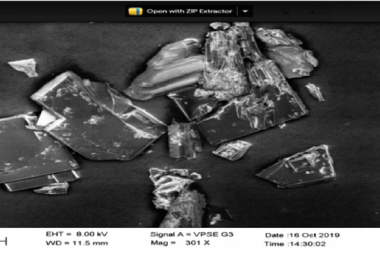 Fig. 11 SEM images of the cocrystal