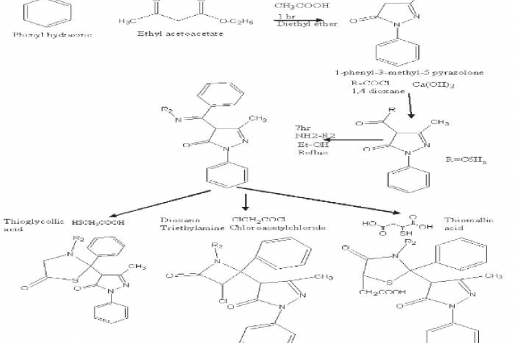 Scheme of the heterocyclic analogues fused with the core scaffold pyrazolone