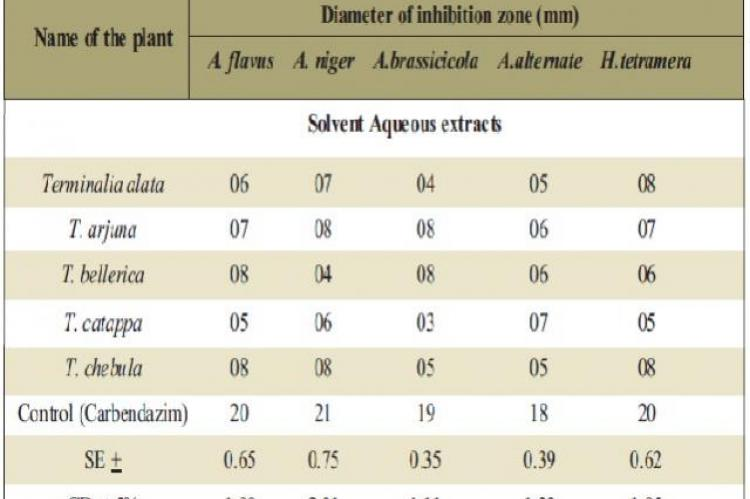 Anti fungal Activity of solvent aqueous fruit extracts of some species of Terminalia