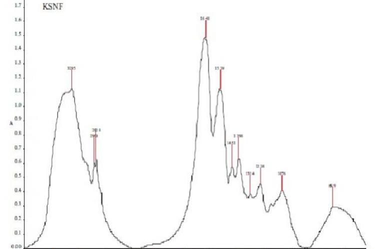 FTIR Spectrum of protein powder exposed to sunlight radiation