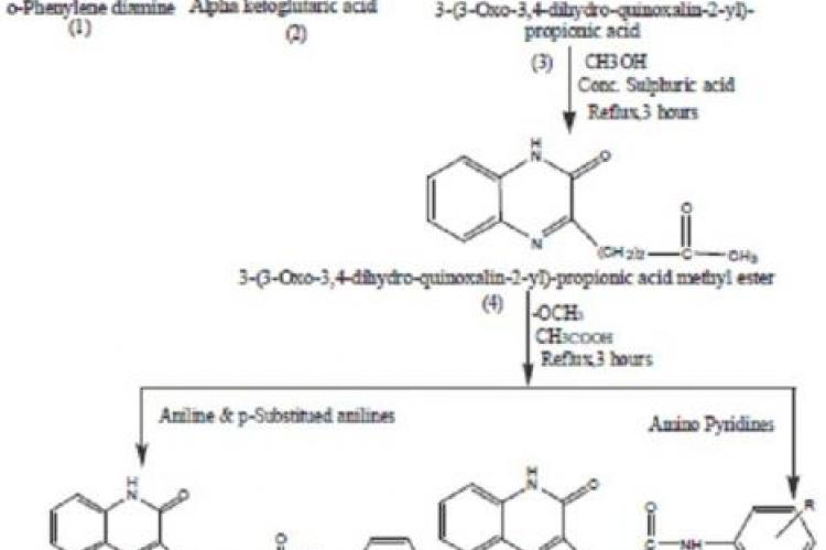 Synthesis of schiff bases of aromatic amines