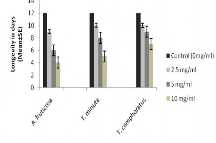 Longevity of P. duboscqi after feeding on the methanol crude extracts of A. fruticosa, T. minuta and T. camphoratus