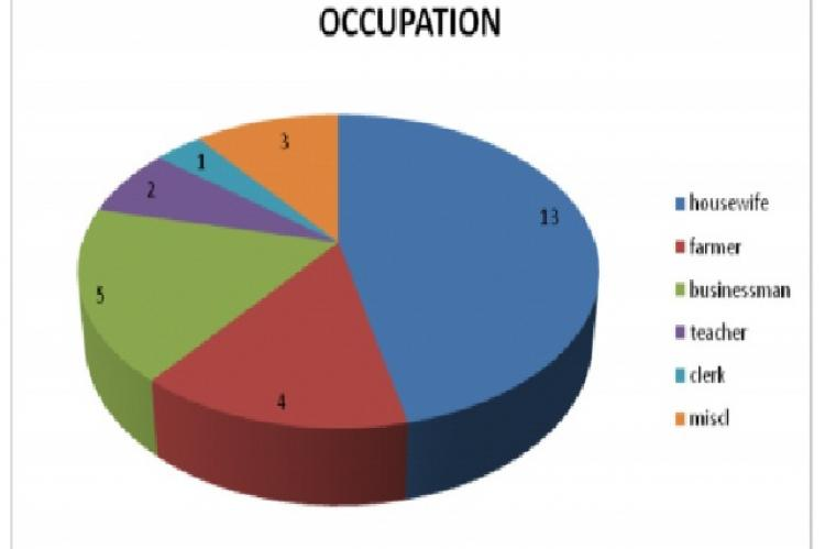 Occupation of subjects with allergic rhinitis (n=28)