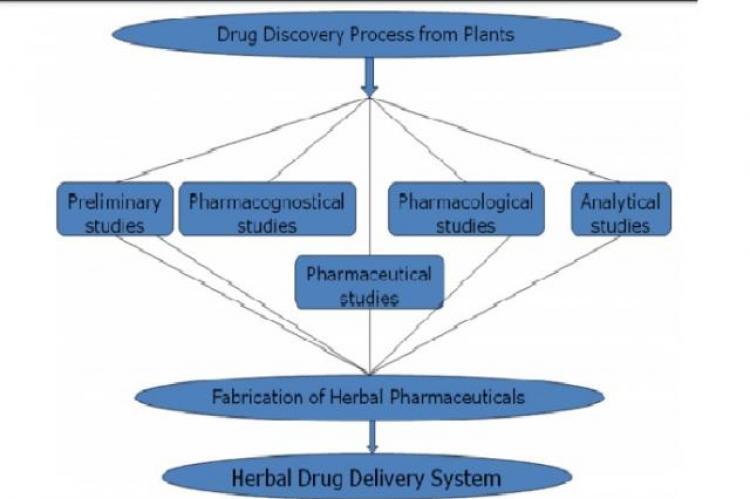 Design and Development of Herbal Drug Delivery System