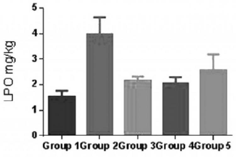 Effect of TSEE (250 and 500 mg/kg) on lipid peroxidation (LPO)