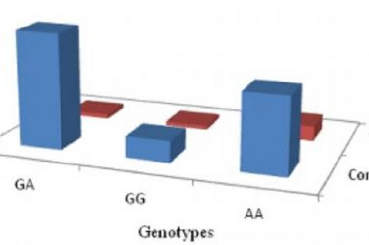 Avg. TNF-alpha conc. (ng/ml) with different genotypes in test and control subjects