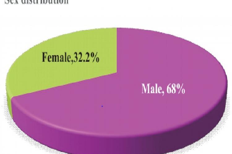 Dristribution Based on Sex