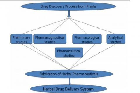 Design and Development of Herbal Drug Delivery System