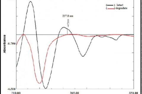 First derivative of absorption spectra of Intact (12 µg ml ) and its Degradation Product (12 µg ml ) in methanol